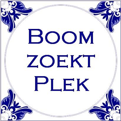 boom_zoekt_plek_01
